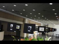 Displays com fotos do concurso