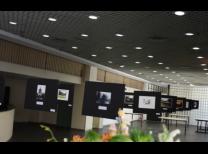 Displays com fotos do concurso